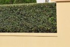 Araluen NT Decorative fencing 30