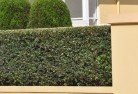 Araluen NT Privacy screens 30